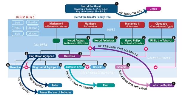 herodian-family-tree